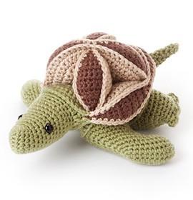 Skillie the Turtle