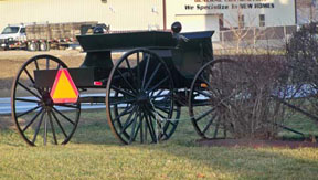 Amish Buggy by Black Bear Inn