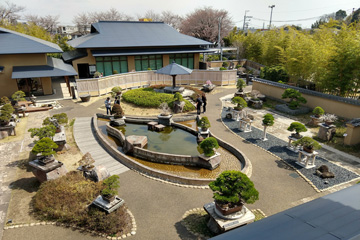 Bonsai museum outside